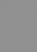 #1013 | Grey