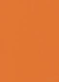#1005 | Orange