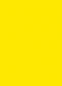 #1006 | Yellow