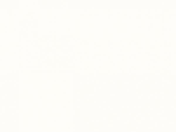 #3001   Oxford White